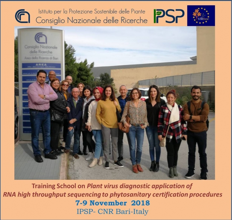 Plant virus diagnostic application of RNA high throughput sequencing to phytosanitary certification procedures: 7-9 November 2018, Bari, ITALY