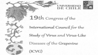 Proceedings of the 19th Congress of ICVG